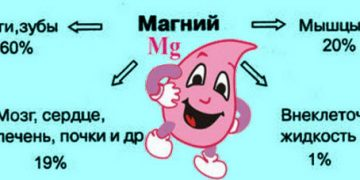 Важность магния для женского организма