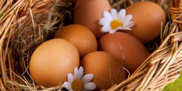 Как мыть голову яйцом?